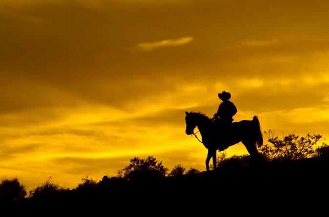 Las Vegas to Red Rock Canyon Sunset Horseback tour