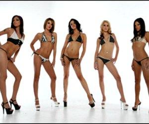 Little Darlings Las Vegas strip club