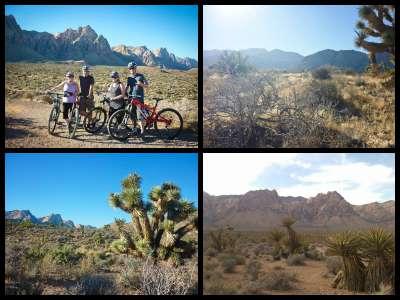 mountain-bike-tour-las-vegas