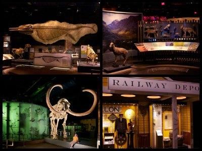 Nevada State Museum Las Vegas