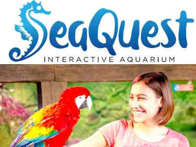 Sea Quest Interactive Aquarium in Las vegas with Kids