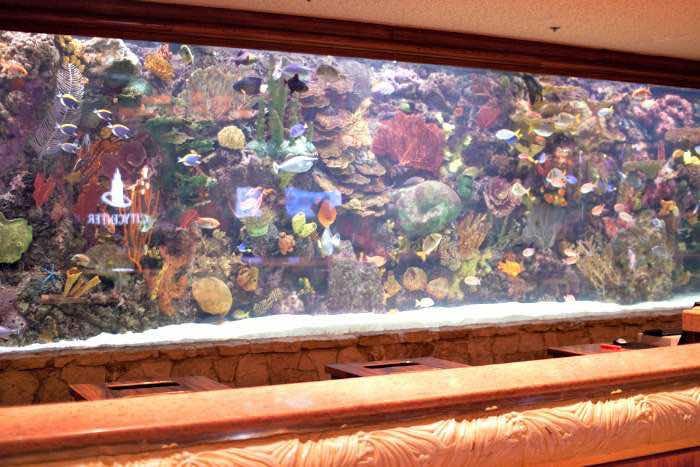 aquarium-mirage-las-vegas
