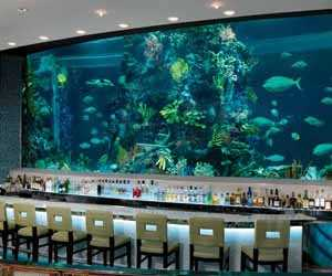 chart-house-seafood-and-steak-las-vegas-restaurant