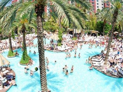 Las Vegas Flamingo Beach Club / GO Pool