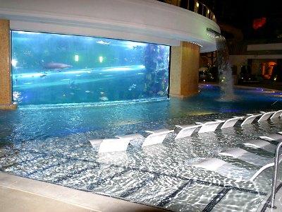 golden-nugget-tank-pool
