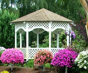 Las Vegas gazebo weddings