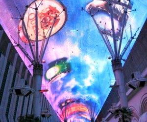 Lights Night Tour in Las Vegas