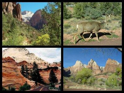 Zion National Park tours from Las Vegas